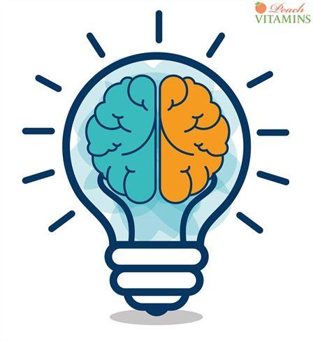 Ginkgo Biloba Benefits For Brain